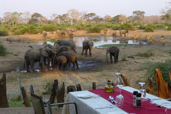 Elephant Valey Lodge