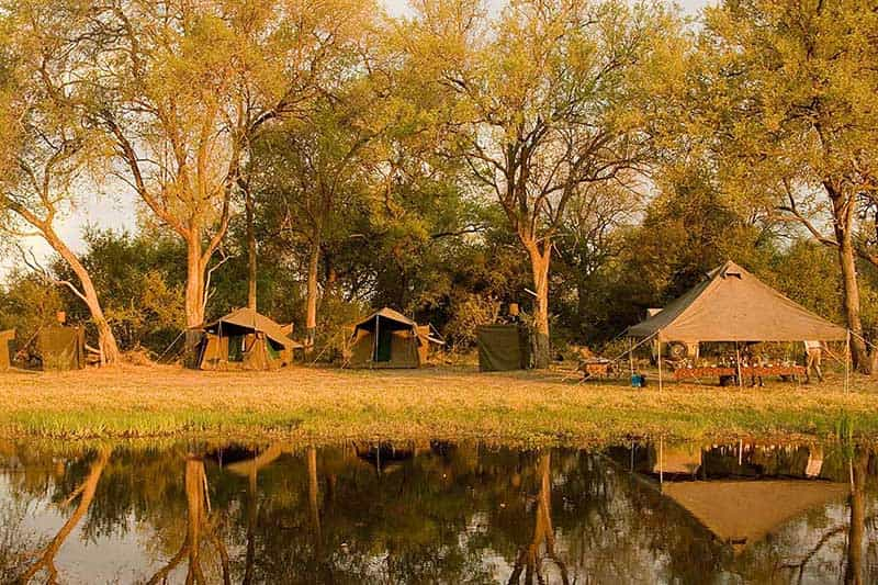Moremi Expedition