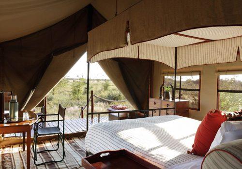 Campo Kalahari Gallery4